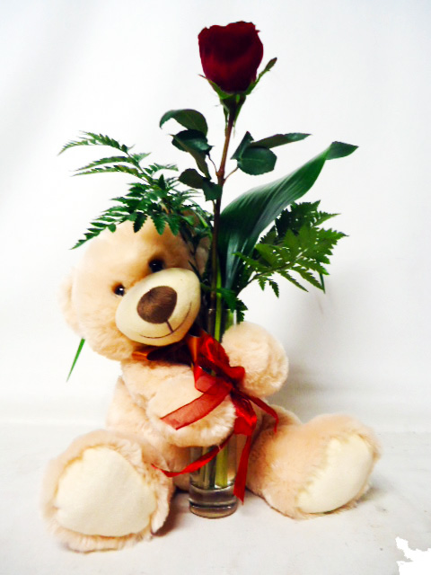 Single Rose with Teddy Bear Anniversary Flowers
